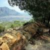 1404547052_Cruz de la Muela- mayo 2010 047