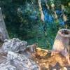 1406566123_Tierra y Agua - copia