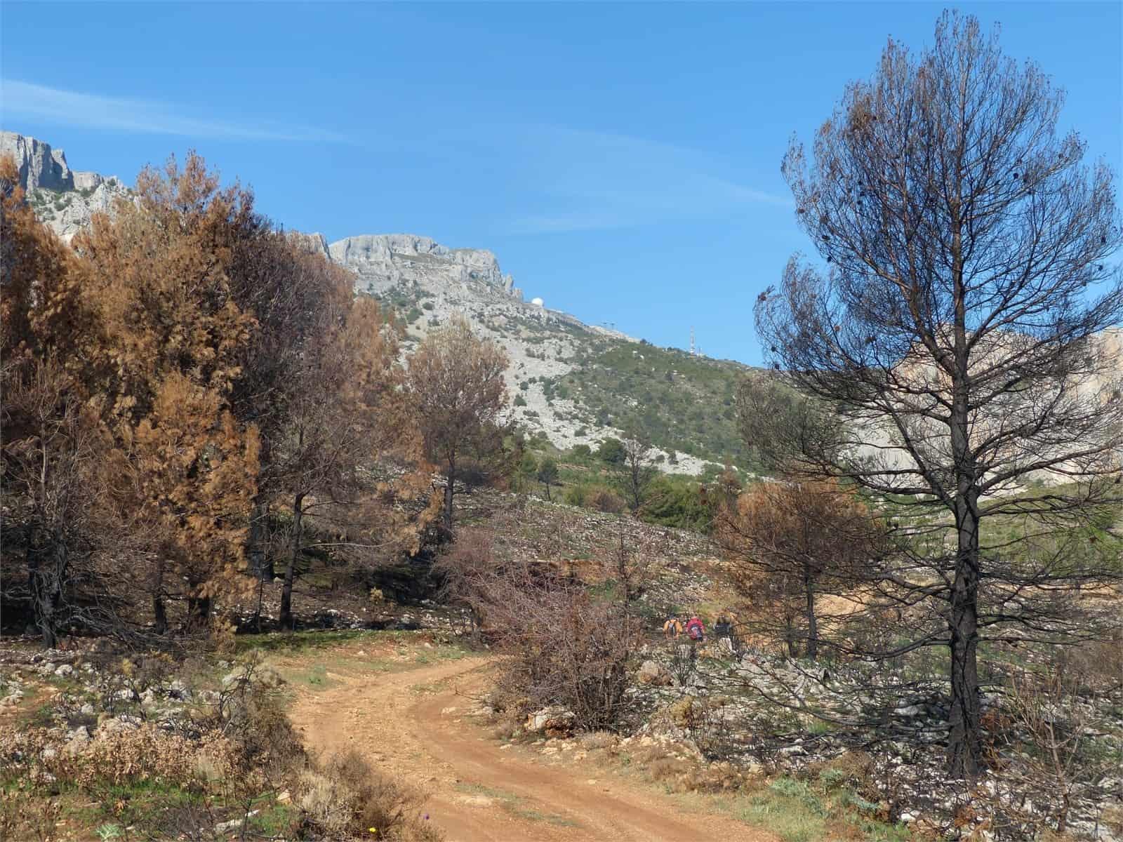 1406756232_Sierra de Aitana (Benimantell)