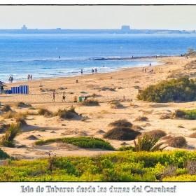 1407312740_Dunas del Carabasi -Tabarca