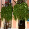 1408610555_Balcones