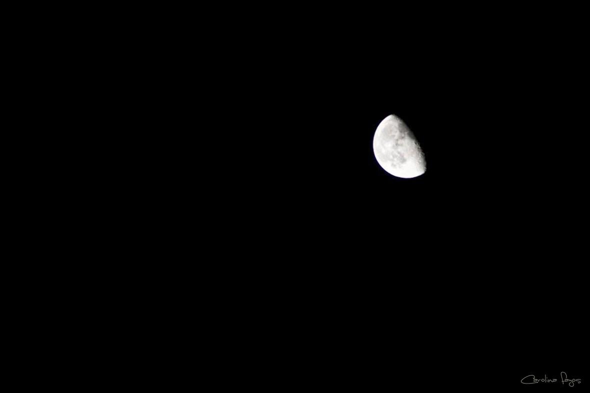 1422634221_luna