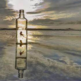 1428822106_peces botella hdr 44b