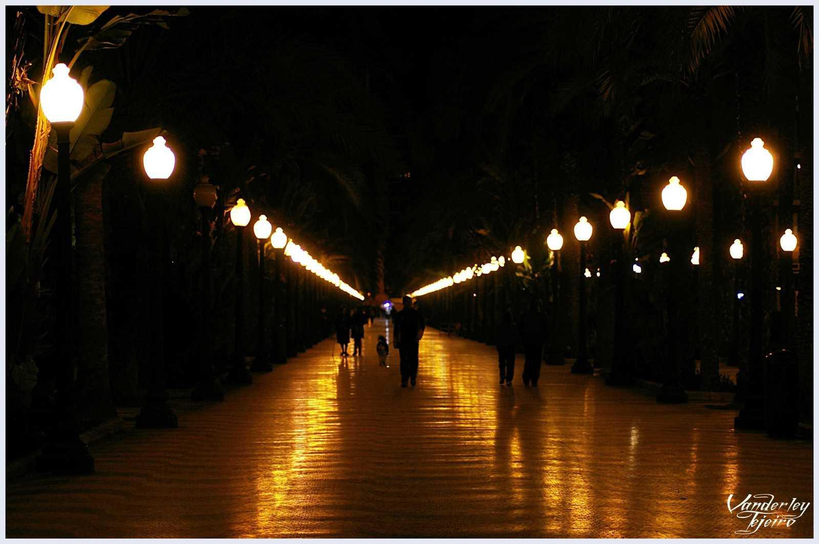 1430910746_Paseo nocturno