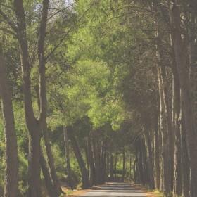 1436289126_Camino al Pantano de Guadalest
