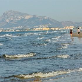 1440506838_A Pie de Mar - De Cova Tallada (Javea) a limite con provincia de Valencia  8-6-2014 653