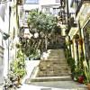 1440773046_Calle Barrio Santa Cruz HDR