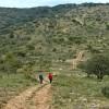 1444516791_A El Menentjador por Barranc del Moli (Ibi) 30-11-2013 190_1889x1061