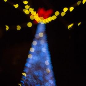 1452284068_Reflejos de Navidad