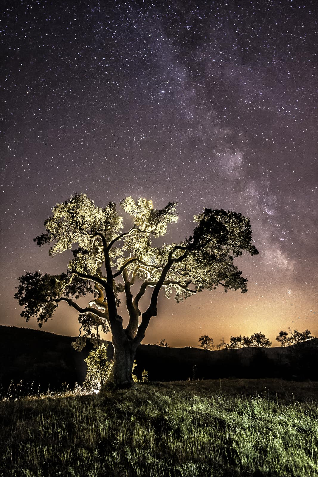 1470182987_milky way galvis