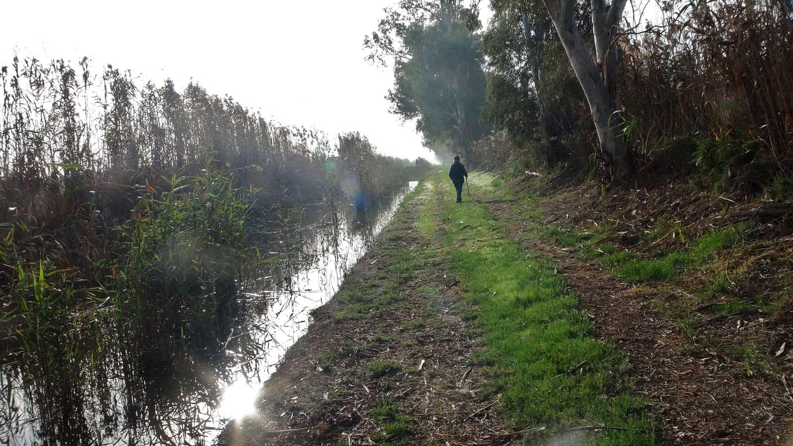 1472231139_Parque Natural El Hondo paseo