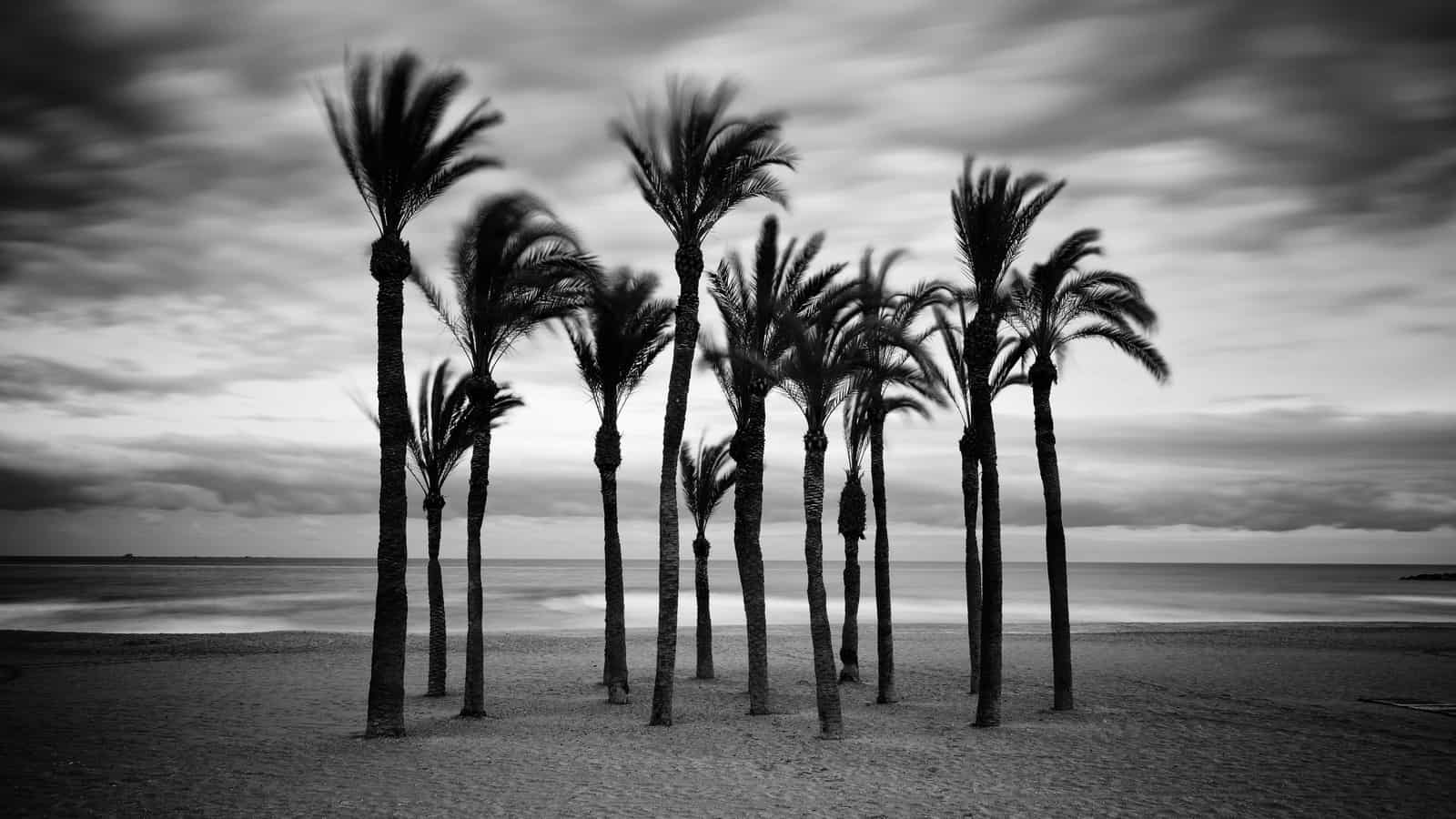 1501784453_Playa_Villajoyosa