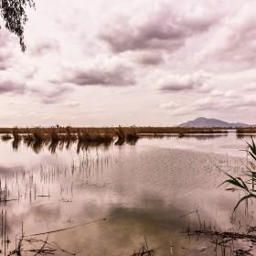1527799936_Nubes en El Hondo