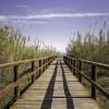1528840361_a la playa