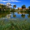 1529692791_Alicante