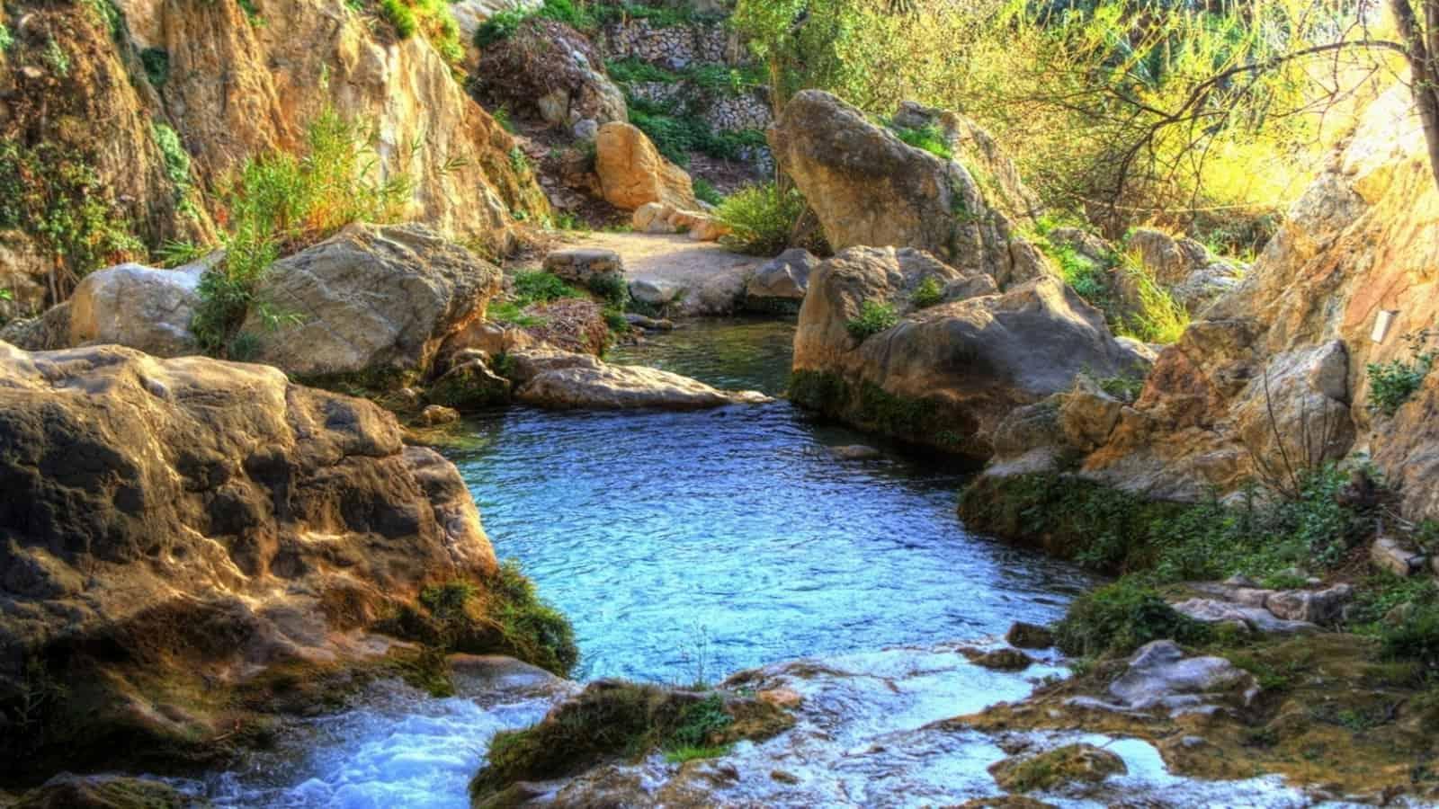 1529792011_On neix el riu