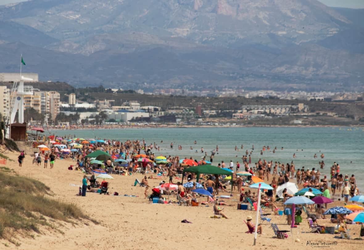 1591535699_Buena Alicante