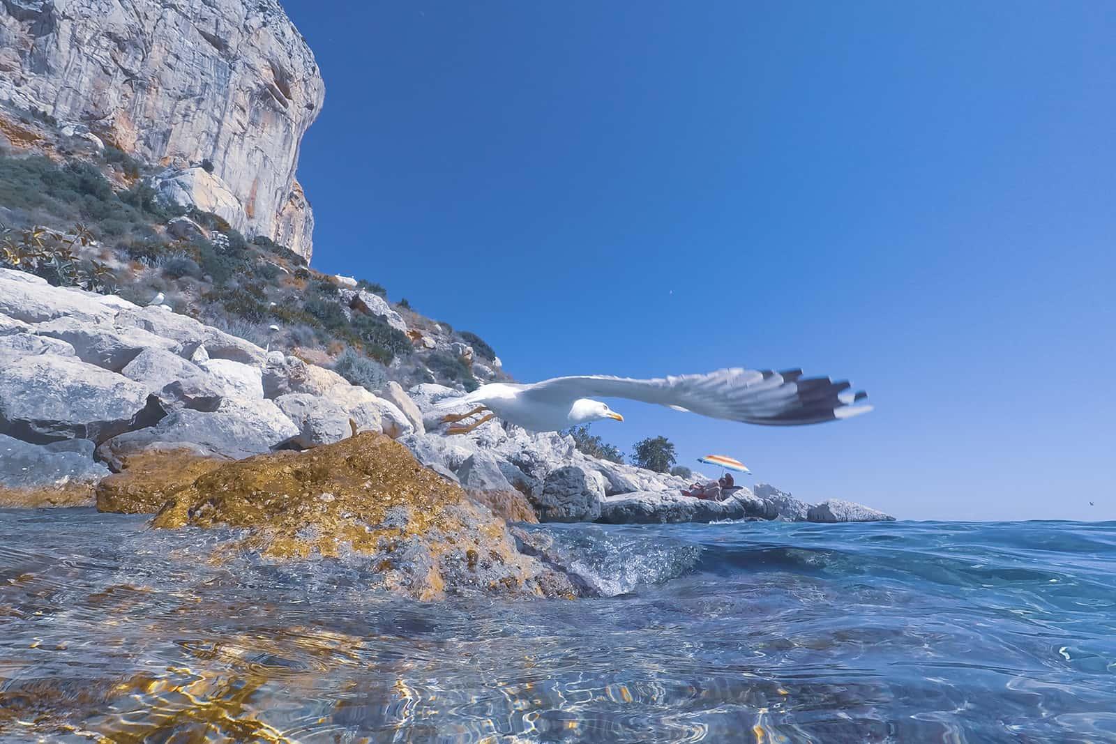 Underwater image Ifach rock in Calpe Alicante province Spain Mediterranean sea