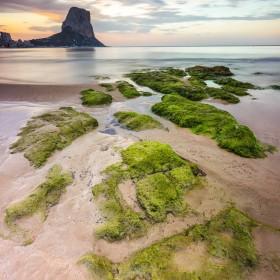 1635103978_Playa de la fossa Calpeweb
