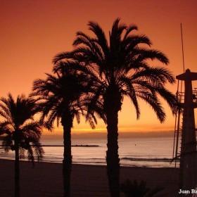 Alicante 2011 047