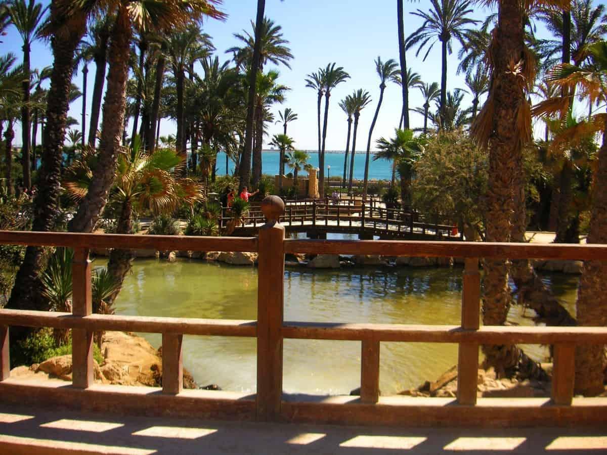 El Palmeral de Alicante copia