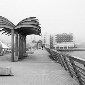 Niebla-en-Alicante