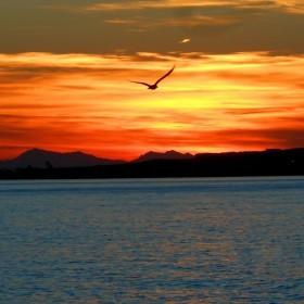 cabo huertas puesta de sol copia